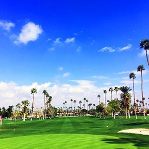 PS_golf
